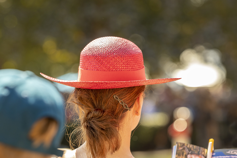 Girl with Hat at Races